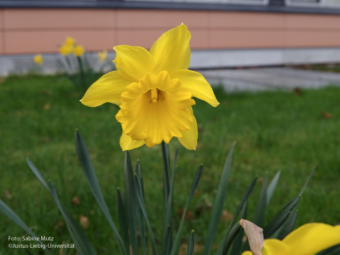 Übersicht/März